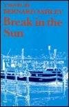 A Break in the Sun: A Novel