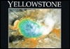 Yellowstone (Postcard Books)