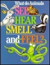 What Do Animals See, Hear, Smell, and Feel?