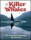 A Pod of Killer Whales : The Mysterious & Beautiful Life of the Orca